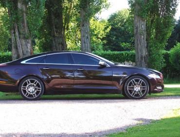 Jaguar XJ aubergine profil